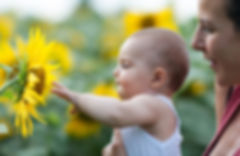 Baby reaching for Sunflower