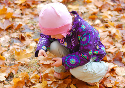 Girl plays with autumn leaves