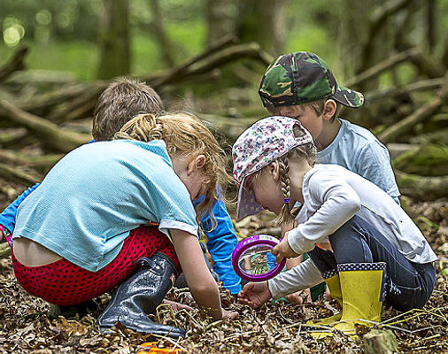 Kids group play in forest