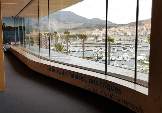 view from aquarium