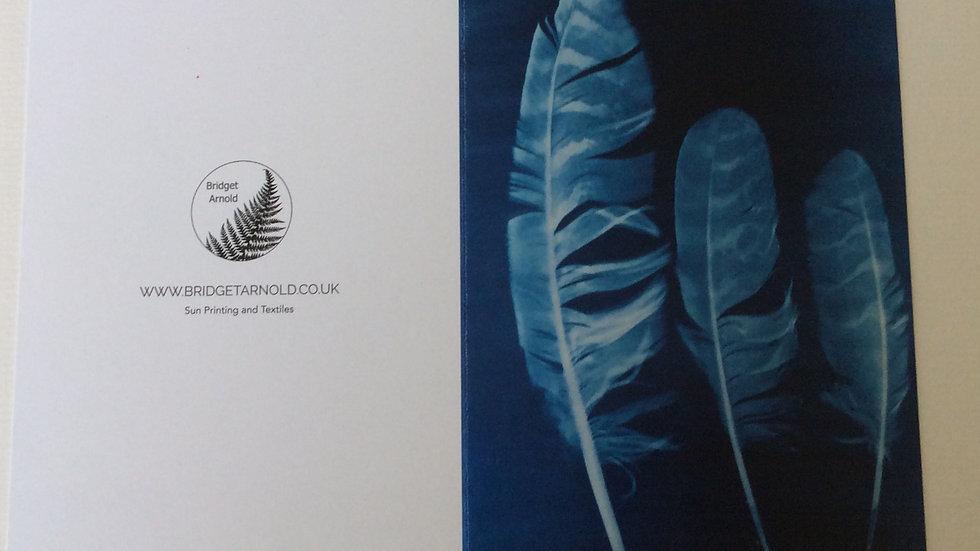 Sun Printed Owl Feathers Card