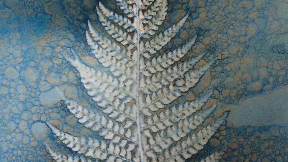 Wet cyanotype and soap suds Fern print