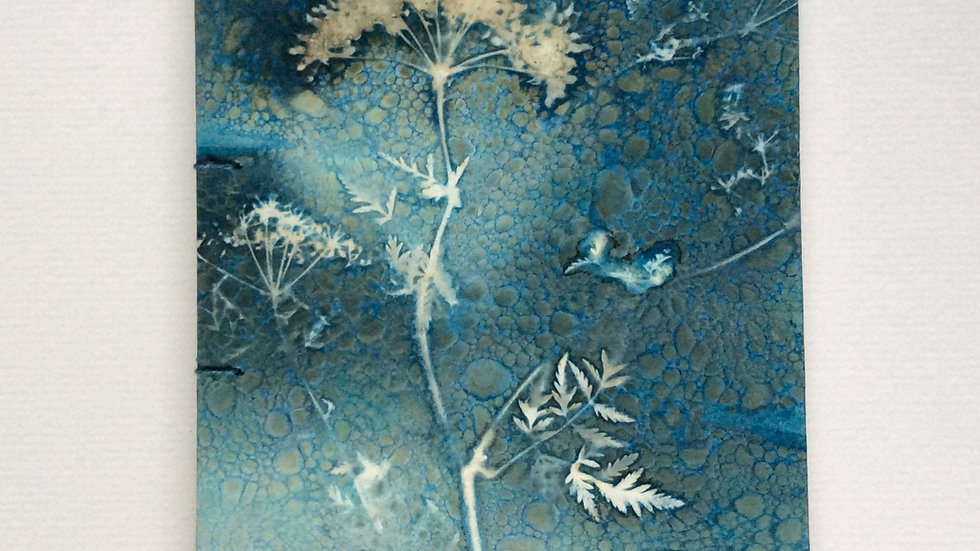 Unique Wet cyanotype and soap suds Book