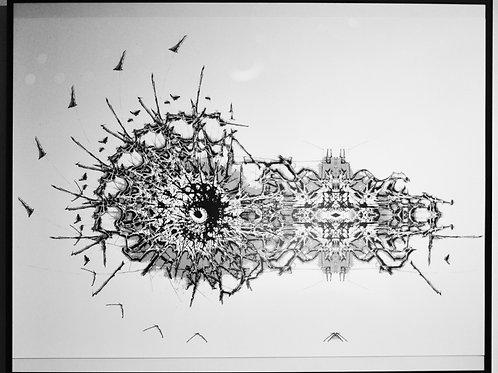 Untitled 9 - Framed