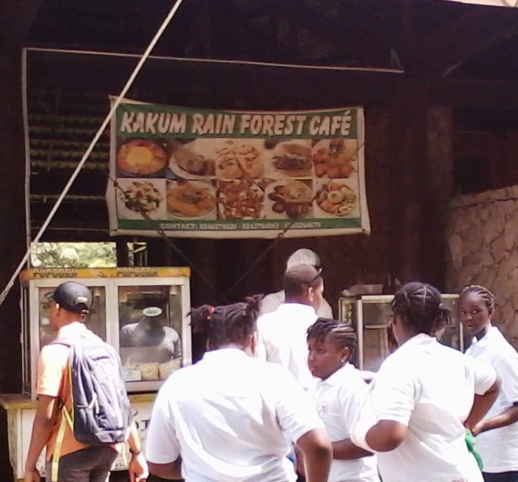 Real Rain Forest Cafe