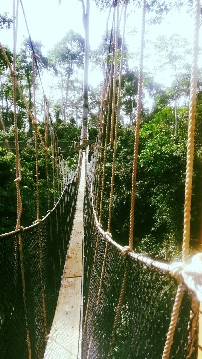 Kukum, Kumasi, and beyond