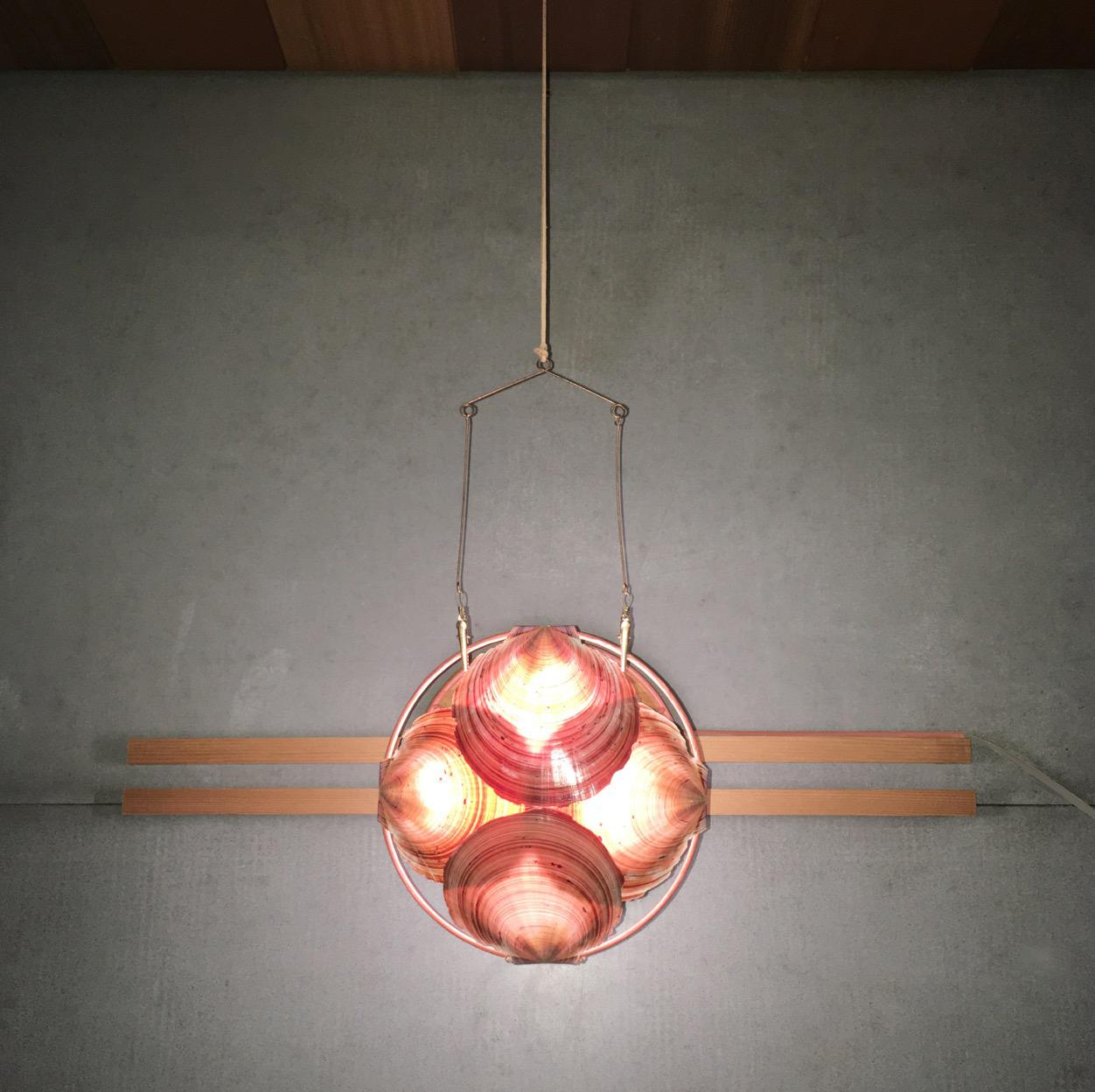 Cloakroom light fitting front lit