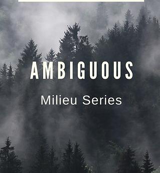 (7) Ambiguous.png