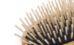 Hairbrush WR-Accessoires