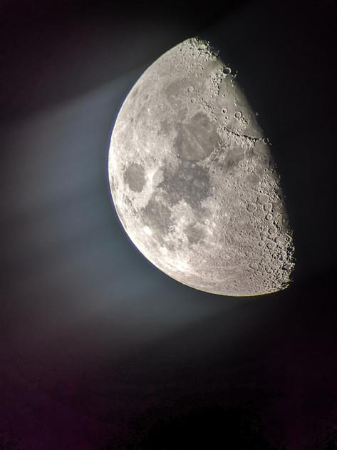 Pakan Lab - Moonshine