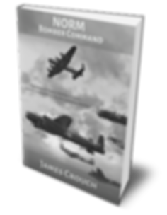 Norm - Bomber Command 3D Book.png