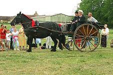 balade attelage 2 chevaux percherons