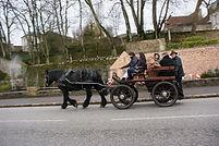 balade attelage 1 cheval percheron
