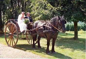 Mariage avec attelage percheron