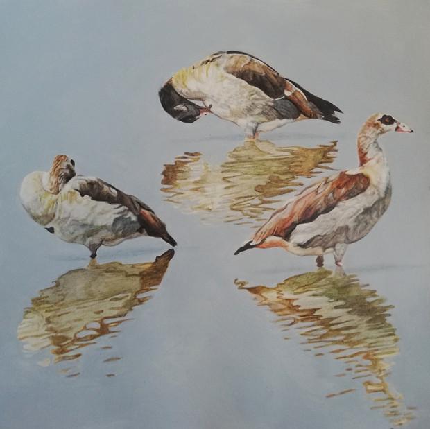 Commission in watercolour & pencil