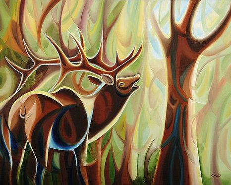 Frederik Elk