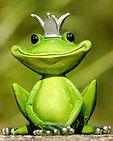 Pixabay-frog-2240764.jpg
