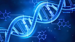 DNA Video 02a