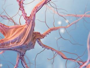 Epilepsia ou Convulsão, qual a diferença?