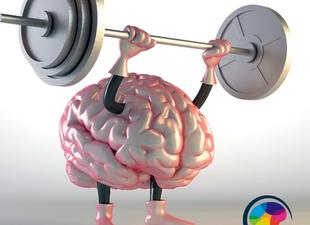 Exercite seu cerebro