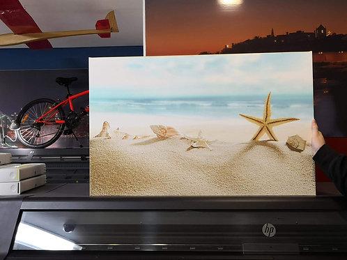 Canvas 50x70cm