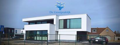 De goeipraktijk Oostende multidisciplinaire groepspraktijk hoogbegaafdheid onderpresteren psychotherapie coaching individueel groep loopbaanbegeleiding