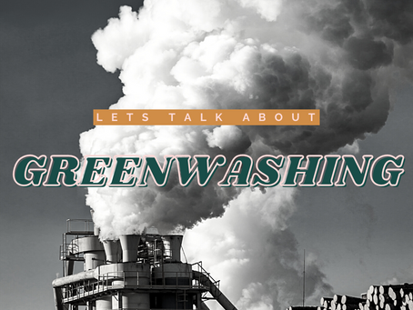 What is Greenwashing? How to Spot and Avoid Greenwashing in eCommerce