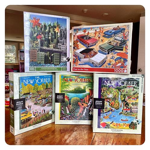 1000 Piece New York Puzzle Co. Puzzles