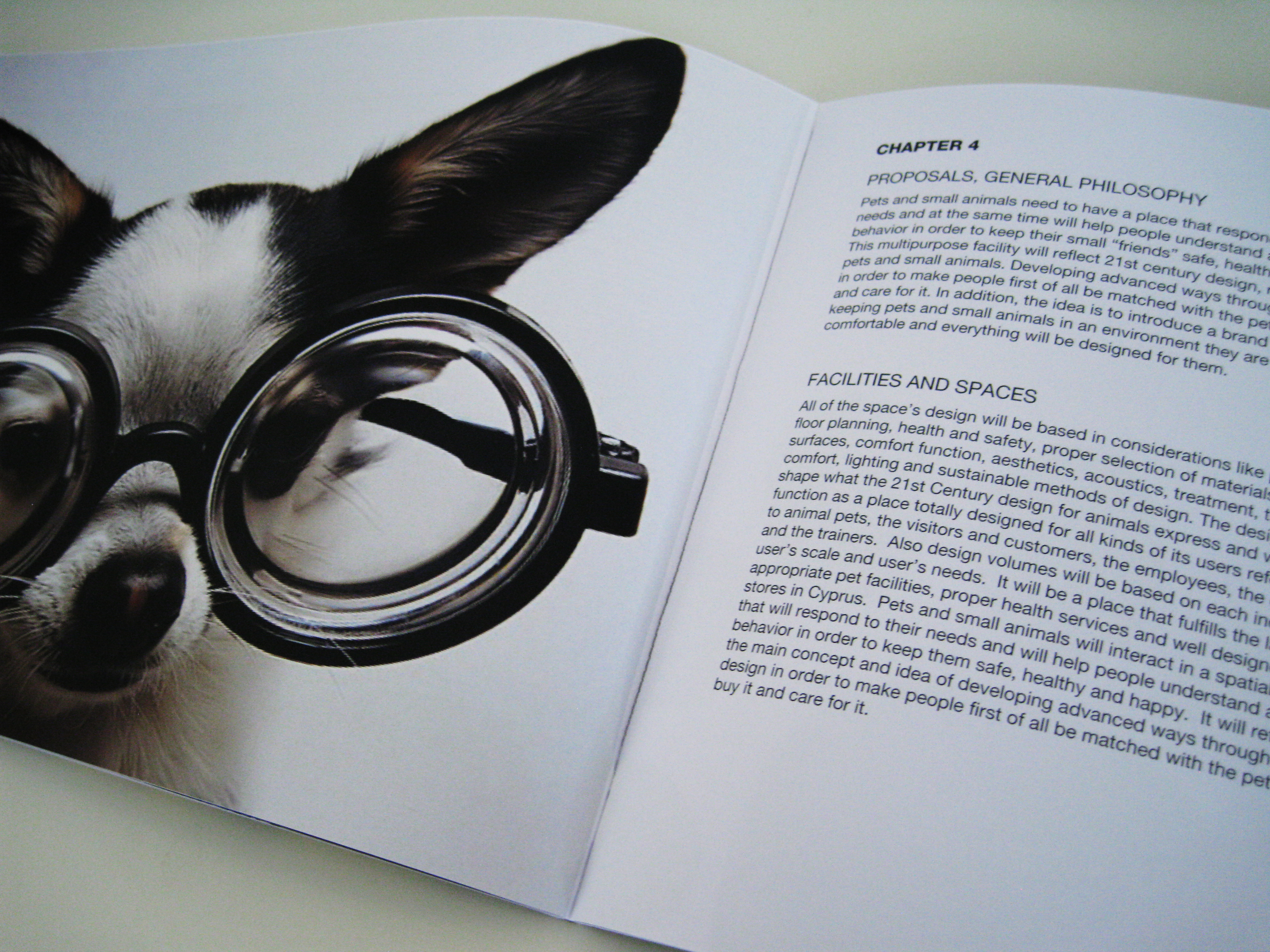 Designing for pets in the 21st cent.