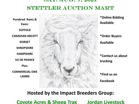 6th Annual Genetic Impact Ram and Ewe Sale
