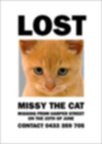missing_missy6.jpg