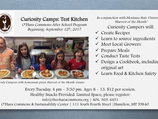 Curiosity Camps | 2017 After School Programs