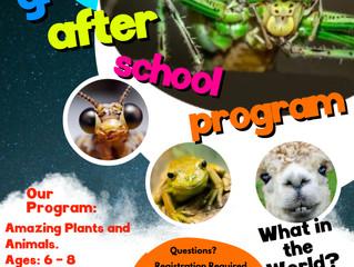 Grasshoppers. After School Program