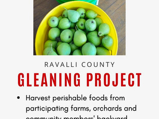 The Gleaning Project