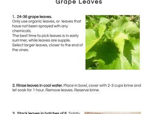 Brined Grape Leaves