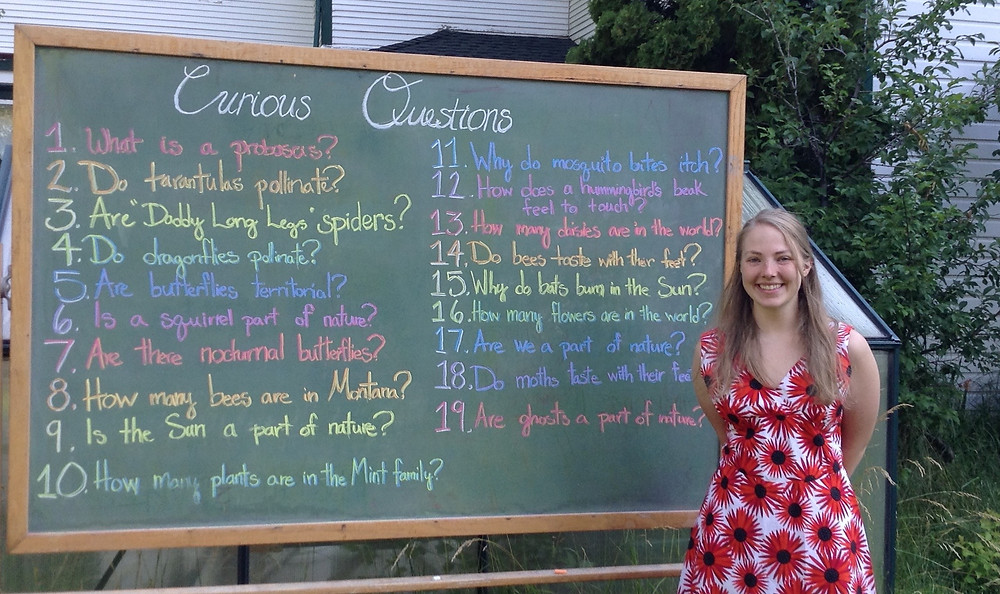 Curious Questions From Campers