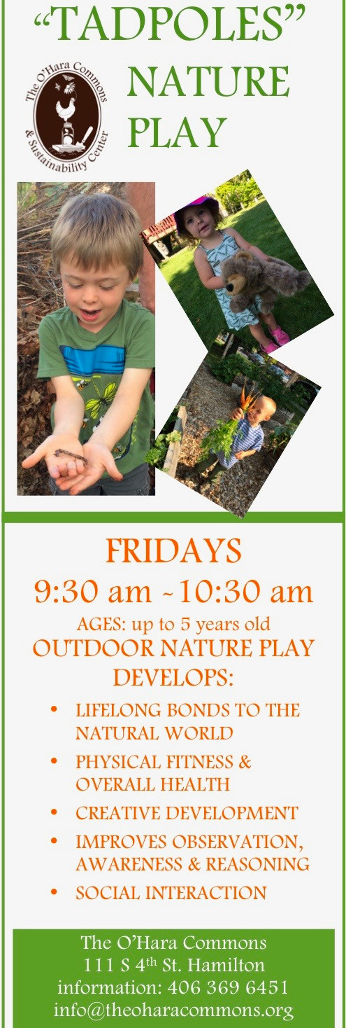 Tadpoles Nature Play Group Poster