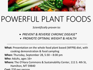 Powerful Plant Foods