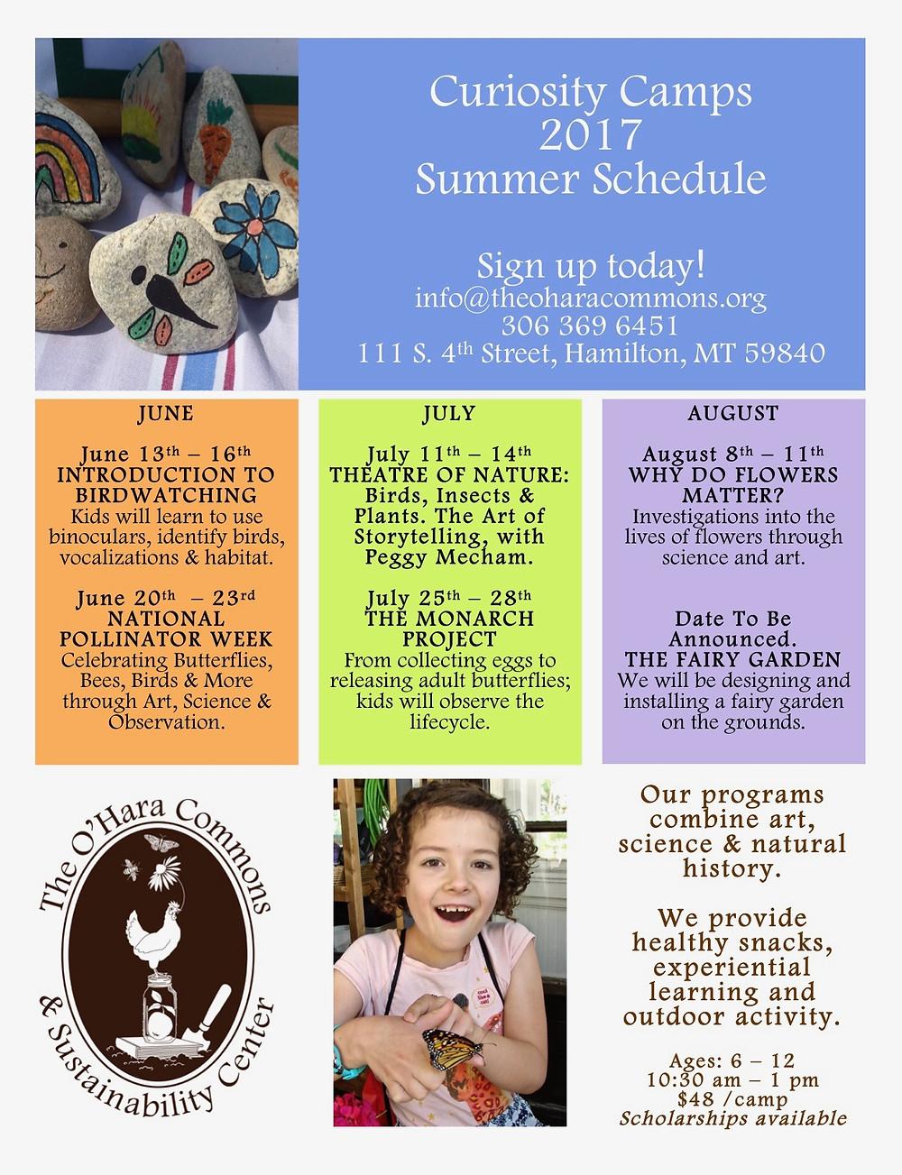 Summer Schedule Poster