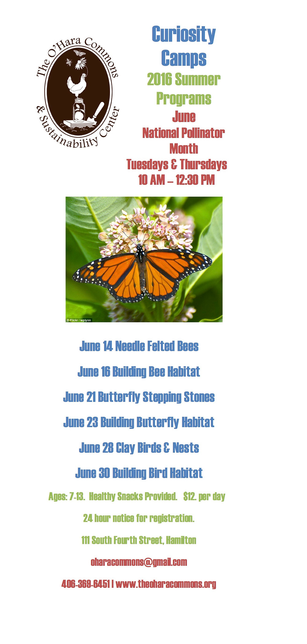 Curiosity Camps Schedule