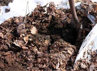 Winter Mulch