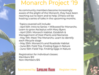 The Monarch Project '19