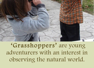Introducing: 'Grasshoppers'