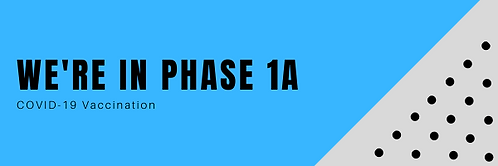 phase1a website banner.png