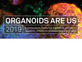 Organoids Are Us 2019