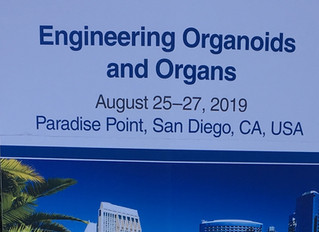 Cell Symposium: Engineering Organoids and Organs