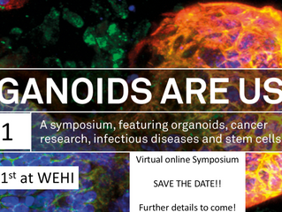 Save the Date!!                                   Organoids Are Us Virtual Symposium  -  1 June 2021