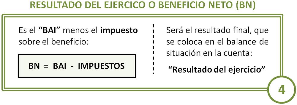 Resultado del ejercicio o beneficio neto. PyG.