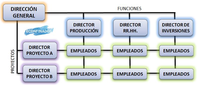 Modelo matricial de estructura organizativa