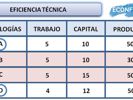 Eficiencia técnica y económica.
